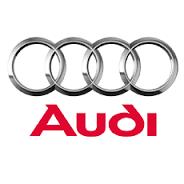Диагностика и ремонт Audi